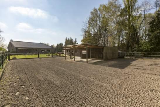 Laagbouwwoning met paardenstallen, schuilstal, paddoch en buitenpiste – Beerzel